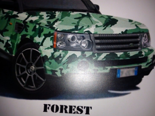 Camouflage Forest