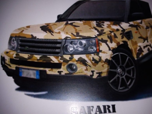 Camouflage Safari