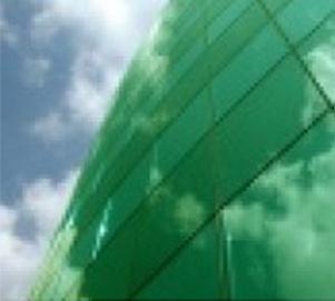 green_80-2_xc.jpg